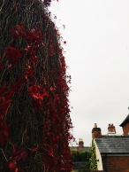 Welshpool, Wales photo: E Proudfoot