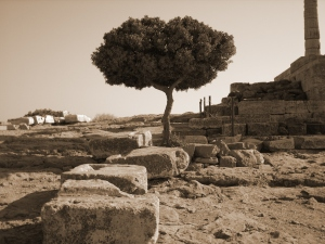 Sounion, Greece (photo: K. Lukey-Coutsocostas)